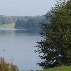 Öjendorfer Park